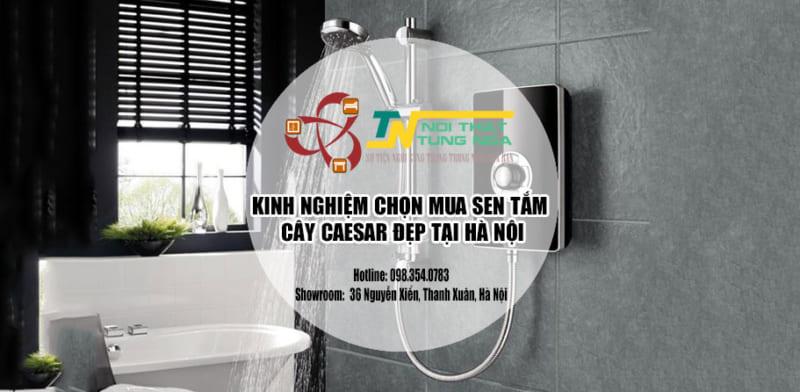 Kinh nghiệm chọn mua Sen tắm cây Caesar Đẹp tại Hà Nội